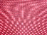Fotokarton s puntíky 300g 50x70cm bíločervený 5902