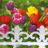 Papírový ubrousek Royal Tulips