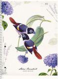 Spirálový sešit Secret Garden, mix, A4+, linkovaný, 80 listů, SHKOLYARYK