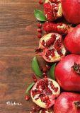 Spirálový sešit Fruit, linkovaný, A4, 80 listů, VICTORIA