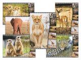 pohlednice sr Z039 B UV 1230306