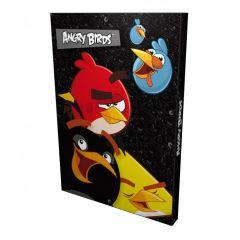 Box na sešity A4 Angry Birds