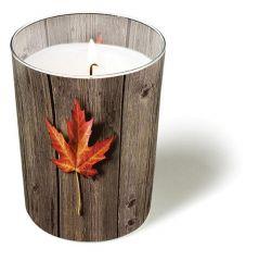 Svíčka ve skle Lonley leaf