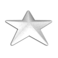 Vánoční hvězda BGW 7