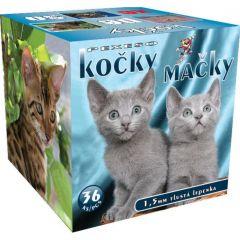 Pexeso Kočky v krabičce