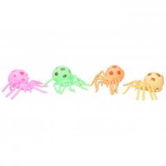 Mačkací sliz - pavouk