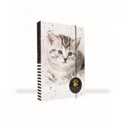 Box na sešity A5 Kočka