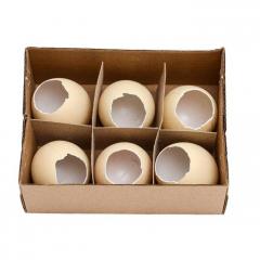 Plastové vejce puklé WPJ-8919