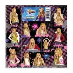 Samolepky Hannah Montana 16 x 16