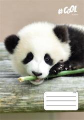 Sešit Wildlife, mix motivů, A4, čtverečkovaný, 32 listů, COOL by Victoria