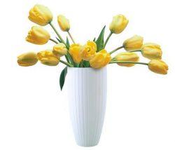 Váza Kala A, porcelánová, 24 cm, ROTBERG