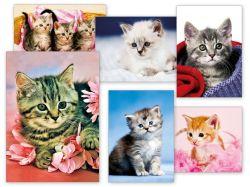 Pohlednice dětské s koťátky