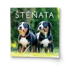 Kalendář nástěnný - Štěňata / BNL2