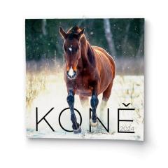 Kalendář nástěnný - Koně / BNL3