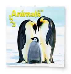 Kalendář nástěnný poznámkový - Zvířátka / BNL9